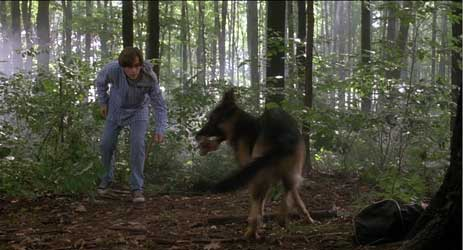 Michael tries to get this German shepherd to return the evidence
